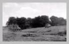 Image : 7 août 1944 : un escadron de chars Sherman transportant des unités d'infanterie progresser dans le secteur de Reffuveille.