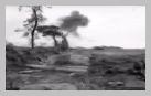 Image : 19 juillet 1944 : un escadron de chars Sherman au contact dans le secteur de Villiers-Fossard au nord de Saint-Lô.
