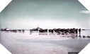 Image : Photos de Juno Beach - Opération Overlord