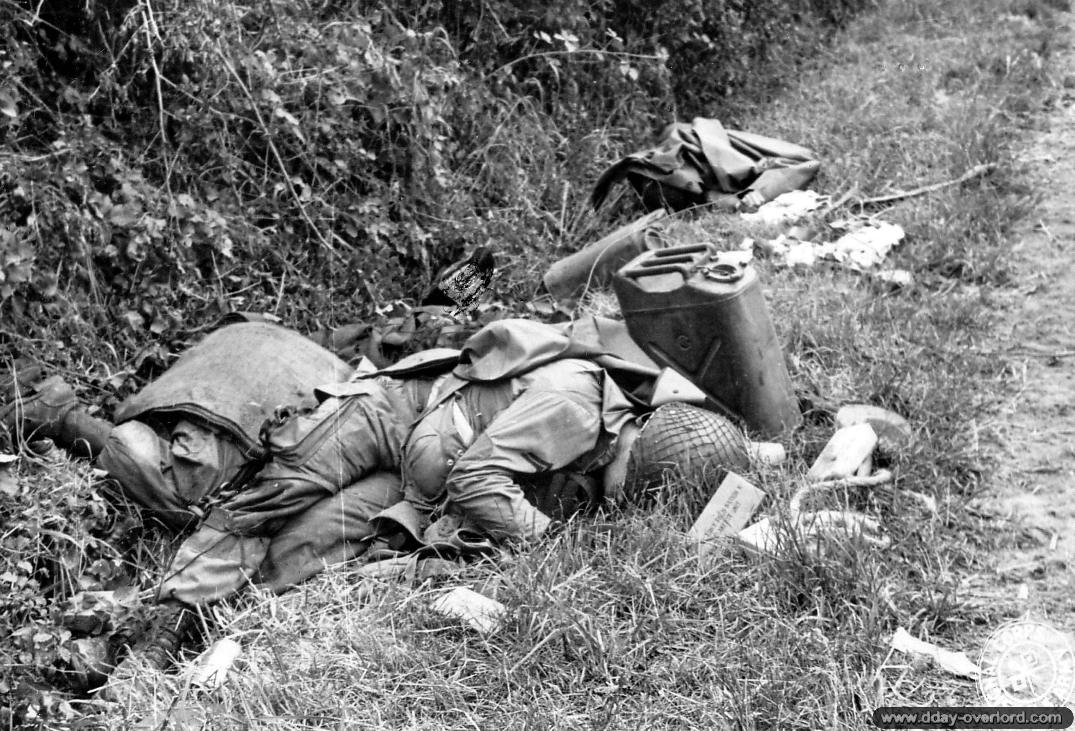 Фото союзных войск великой отечественной войны.