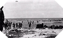 Image : Photos d'Utah Beach le 6 juin 1944