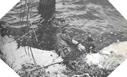 Image : Ce parachutiste de la 82ème Airborne s'est noyé par moins d'un mètre d'eau dans les marais