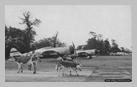 """Image : Un P-47D Thunderbolt 42-25904 baptisé """"Lethal Liz II"""" et appartenant au 81 Fighter Squadron du 50 Fighter Group (codé 2N-U) sur l'aérodrome américain ALG A-6 situé à proximité de La Londe."""