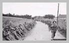 Image : 6 juin 1944 : des soldats anglais de la 50th Infantry Division progressent vers l'intérieur des terres à hauteur du village de Saint-Gabriel.