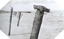 Images : Un pieux miné, destiné à empêcher tout débarquement aérien ou naval