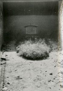 L'une des cours de la prison de Caen où ont été fusillés 87 résistants le 6 juin 1944